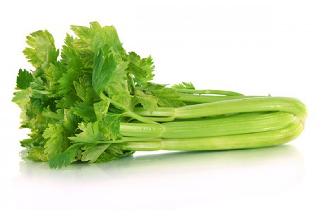 Листья Сельдерея Для Похудения. Как употреблять сельдерей для похудения, особенности жиросжигающей диеты и отзывы похудевших